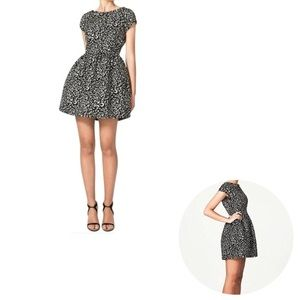 Zara Black White Quilted Leopard Print Tulip Dress